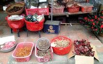 Lên Hà Giang, mua nấm ngọc cẩu làm quà