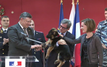 """Video chú chó Nga thay thế """"người hùng 4 chân"""" của Pháp"""