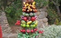 Cây thông trái cây thắp sáng bàn tiệc Noel