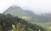 Chinh phục núi Cà Đam, đất của loài sâm bảy lá