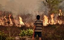 Indonesia mất 16 tỉ USD vì cháy rừng, gấp đôi sóng thần 2014