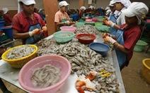 """""""Nô lệ"""" chế biến thủy sản ở Thái Lan làm việc ra sao?"""