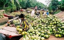 Bến Tre: sản phẩm từ dừa chiếm 30% tổng kim ngạch xuất khẩu