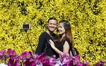 Du khách nườm nượp đổ về Đà Lạt trẩy hội Festival hoa