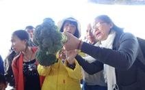 Festival hoa Đà Lạt: Con đường nông sản thu hút du khách
