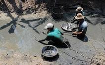 Sản lượng cá đồng ở Cà Mau xuống mức thấp nhất trong 5 năm