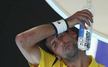 Djokovic từng bị gạ gẫm bán độ