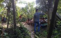 Bắt trường gà lớn giữa vườn dừa huyện Cái Bè