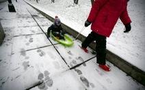 Bão ở Bờ Đông nước Mỹ, Washington bị vùi sâu trong tuyết