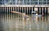 Lại quăng chài bủa lưới trên kênh Nhiêu Lộc - Thị Nghè