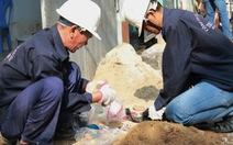 World Bank cam kết tiếp tục hỗ trợ VN