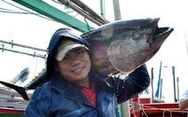 Bình Định chọn cá ngừ là nông sản chủ lực