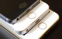 Apple giới thiệu iPhone và iPad mới vào tháng 3?