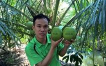 """Hành trình của chàng trai làm nên thương hiệu """"dừa Phú Quý"""""""