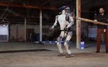 Xem robot biết tự đứng dậy khi bị xô ngã