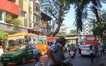 Xe đò đậu đón khách giữa Sài Gòn còn tìm giải pháp