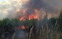 Huy động hơn 300 người lên núi Chứa Chan dập cháy