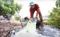 Thủ tướng Nguyễn Tấn Dũng: Dồn sức chống xâm nhập mặn