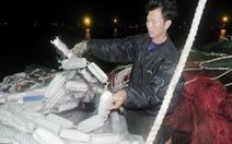 Cận cảnh tàu cá Quảng Nam bị tàu hải cảnh Trung Quốc cướp phá