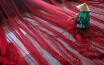 Ảnh đẹp Việt Nam gây lo ngại