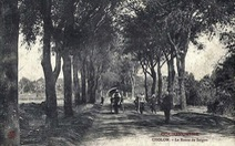Quy hoạch Sài Gòn 1772 vượt xa tầm nhìn người Pháp 1865
