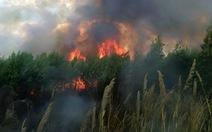 Lại cháy rừng trên núi Chứa Chan