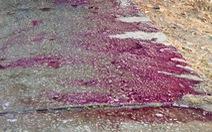 Hóa chất rơi vãi tím rịm 4km đường