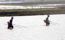 Cấm dùng chất nổ, xung điện, chất độc để khai thác thủy sản