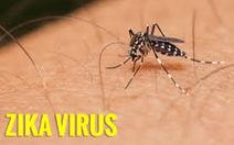 TP.HCM công bố dịch bệnh do virut Zika