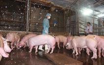 Gian lận kinh doanh thức ăn chăn nuôi, phạt 150 triệu đồng