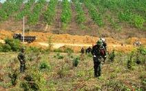 Bom mìn làm ô nhiễm trên 20% diện tích đất đai toàn quốc