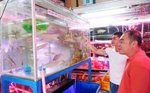 TP.HCM ưu tiên nghiên cứu bảo tồn cá cảnh bản địa