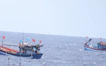 Ngư dân rơi xuống biển mất tích