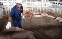 Thực phẩm bẩn: Lãnh đạo địa phương phải chịu trách nhiệm