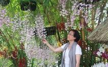 Hoàng thành Huế triển lãm gốm, hoa lan, cây cảnh, thư pháp