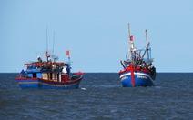 Cấp chứng nhận an toàn cho cá đánh bắt xa bờ