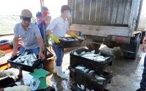 Hỗ trợ ngư dân miền Trung
