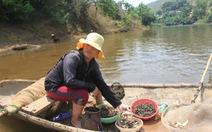 Cá chết trên thượng nguồn sông Bưởi