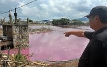 Điểm mặt doanh nghiệp xả thải làm cá chết trên sông Chà Và