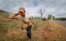 TP.HCM hỗ trợ Đắk Lắk 1,5 tỉ đồng chống hạn