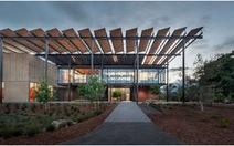 """Chùm ảnh """"nhà xanh"""" mới của Đại học Stanford (Mỹ)"""