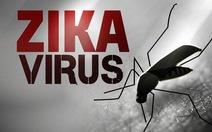 Số phụ nữ mang thai nhiễm Zika ở Mỹ: 157 người