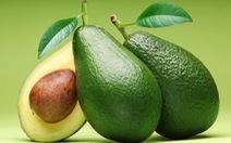 Bơ - trái cây tốt cho sức khỏe