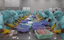 Thượng viện Mỹ bỏ Chương trình giám sát cá da trơn