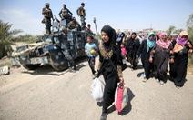 Hàng trăm người chạy trốn khỏi thành phố Fallujah