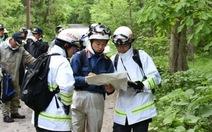 Bé 7 tuổi Nhật Bản bị cha mẹ bỏ trong rừng có nhiều gấu