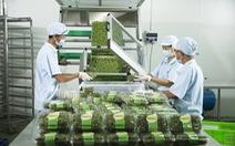 Vingroup ra mắt sản phẩm rau trồng trong nhà kính