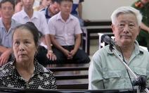 Phân lô bán 5.500m2 đất rừng, lãnh án 5 năm tù