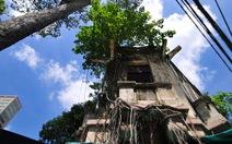 """Bí ẩn biệt thự cổ Sài Gòn: """"trăn quấn""""Lê Công Kiều"""