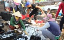 Sử dụng tiền Formosa bồi thườngđạt hiệu quả cao nhất